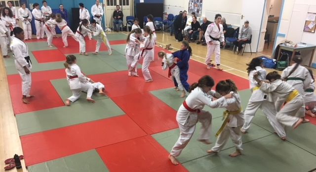Surrey Girls Judo - Photo From Nekoda Davis Judo Masterclass