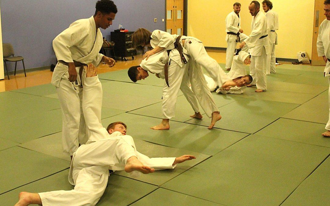 Adult 35+ Judo Induction Course at Elmbridge Xcel Leisure Centre Walton