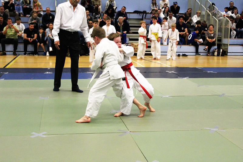 Boys in Walton Judo Tournament
